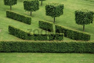 Hecken und Bäume