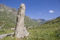 Nadelartiger Fels in der Silvretta