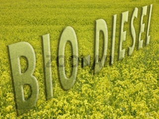 BIO-DIESEL Schriftzug vor Rapsfeld