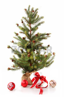 Little christmas tree with red ribboned gifts on white