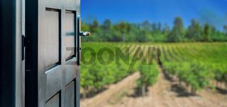 Opened door concept to beautiful and imaginary vineyard