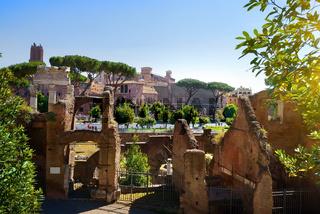 Roman forum, Italy