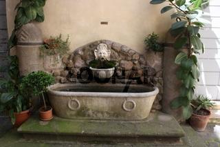 Rom, Brunnen im Innenhof des Palazzo Costaguti an der Piazza Mattei