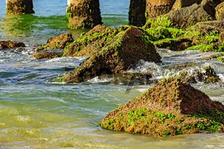 Rocks, moss and sea