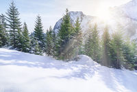 Sun rays through snowy mountains and trees