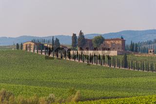 Weinberge mit Gutshof bei Monterrigioni, Toskana, Italien