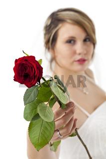 schöne junge Frau in einem Brautkleid mit Schleier mit einer Rose