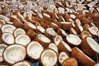 Drying coconuts, India