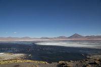 Laguna Colorada in Bolivia