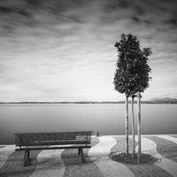 Uferpromenade am Gardasee, Italien, mit Bäumchen und Sitzbank
