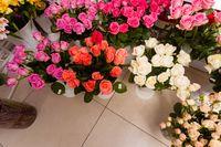 Bouquets roses at a florist's shop