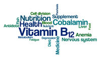 Word Cloud on a white background - Vitamin B12