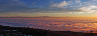 Sonnenuntergang in ein Nebelmeer über dem Bodensee