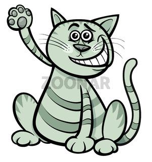 cat or kitten cartoon comic animal character