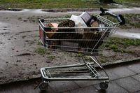 Einkaufswagen mit Blitzknallern