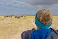 Woman watching herd of elephants on african wildlife safari. Amboseli, Kenya.