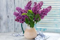 Blooming lilacs in a ceramic jug.