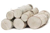 Birkenholz, Stapel auf weißem Hintergrund