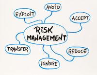 risk  management mind map sketch