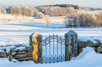 Old iron gate in a snowy winter landscape in the countryside