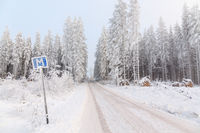 Meeting place on a narrow forest road in a beautiful winter landscape