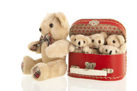 Vintage bears in red suitcase
