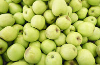 Closeup of many green juicy apple fruits in market