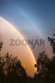 Double rainbow over forest