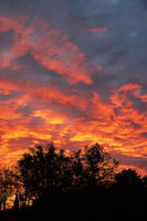 dramatic flaming sky with orange clouds