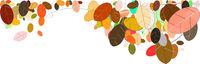 leaves foliage fall autumn illustration