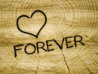 wooden heart love forever branding