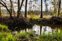 Small pond in Lagoas de Bertiandos