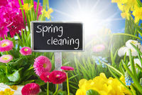 Sunny Spring Flower Meadow, Spring Cleaning