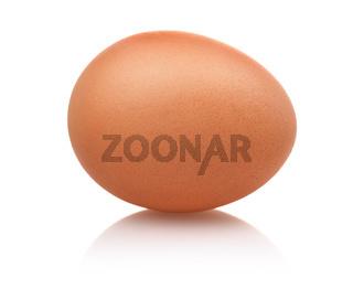 Single brown egg