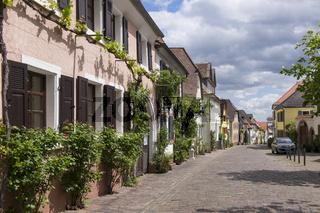 Theresienstraße in Rhodt unter Rietburg