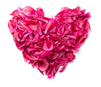 Heart made of peony petals.