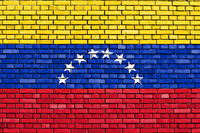 flag of Venezuela painted on brick wall