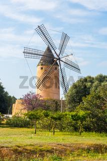 Typische Windmühle in Mallorca