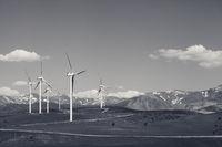 Wind farm at sun spring day