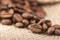 Kaffeebohnen im Fokus