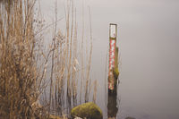 Measure device in a lake