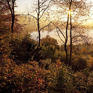 DAU_Daun_Landschaft_05.tif