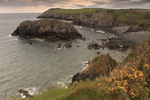 UK Pembrokeshire Freshwater East
