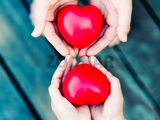 Hearts in hands on grey background