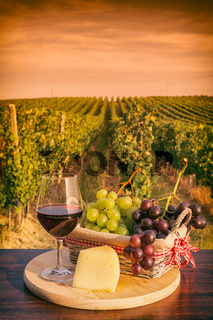 Glass of red wine in front of a vineyard at sunset
