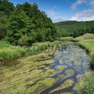 Creek, Landscape of Eifel, Germany