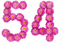Arabic numeral 54, fifty four, from flowers of chrysanthemum, isolated on white background