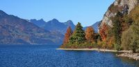 Colorful trees on the shore of lake Walensee, Switzerland. Autumn scene.