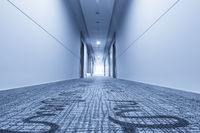 corridor in hotel and carpet