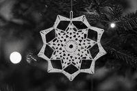 Closeup of elegant ornament on Christmas pine tree